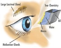 dry eye syndrome causes treatments